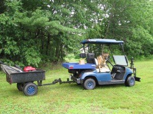 You can tow a variety of trailers with your golf cart! Great for around the yard!